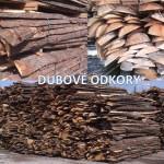 dubové odkory